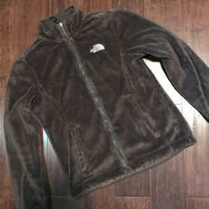 EUC Dark Brown Osito The North Face Jacket